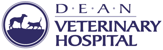 Dean Veterinary Hospital